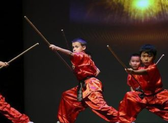 Kung Fu gala expected to promote Chinese culture in US